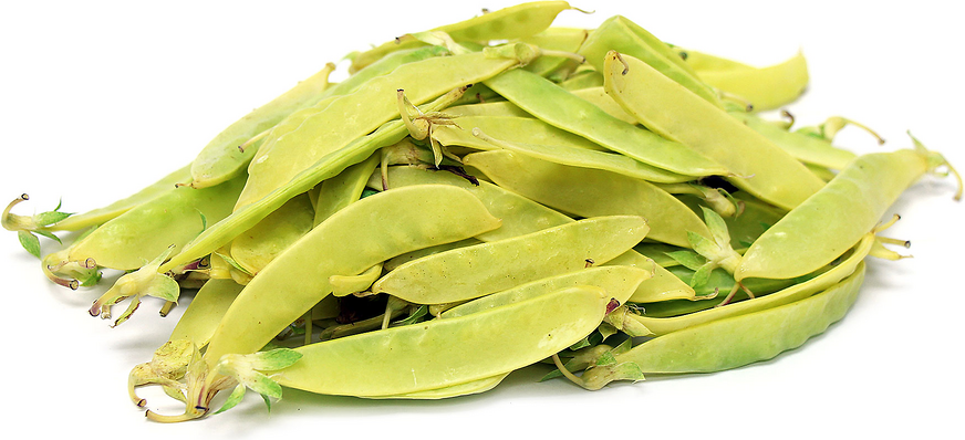 Golden Snow Peas picture
