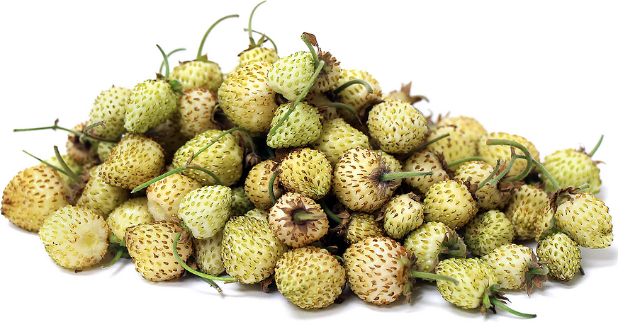 White Alpine Strawberries picture