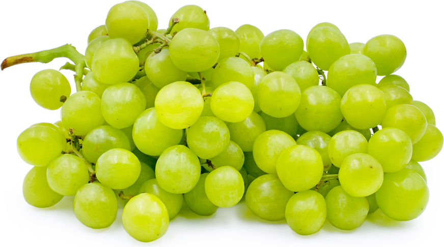 Princess Grapes picture