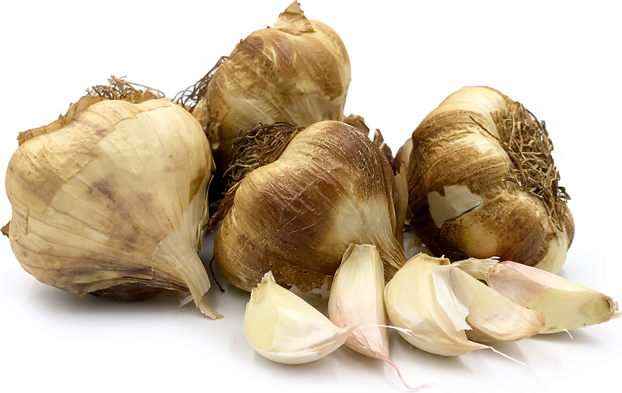 Smoked Garlic picture