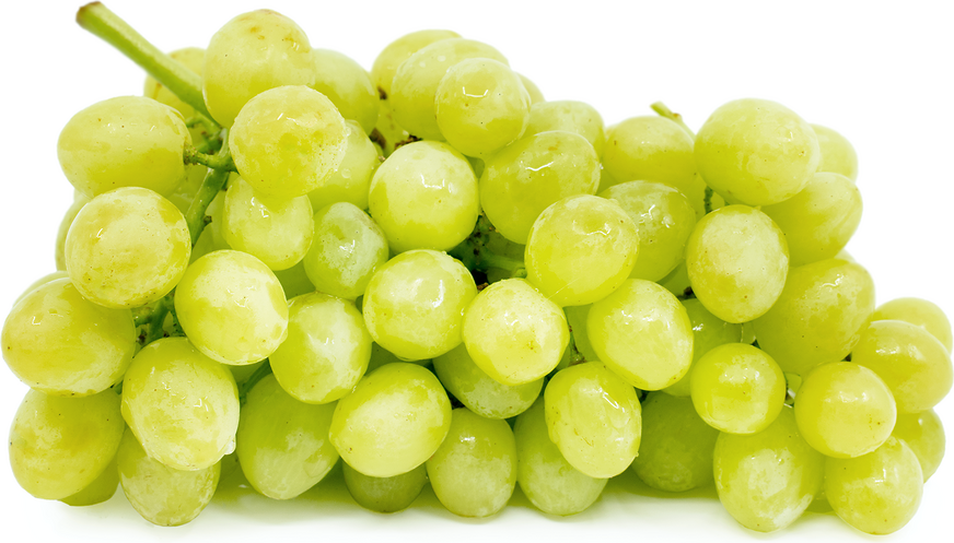 Green Seedless Grapes picture