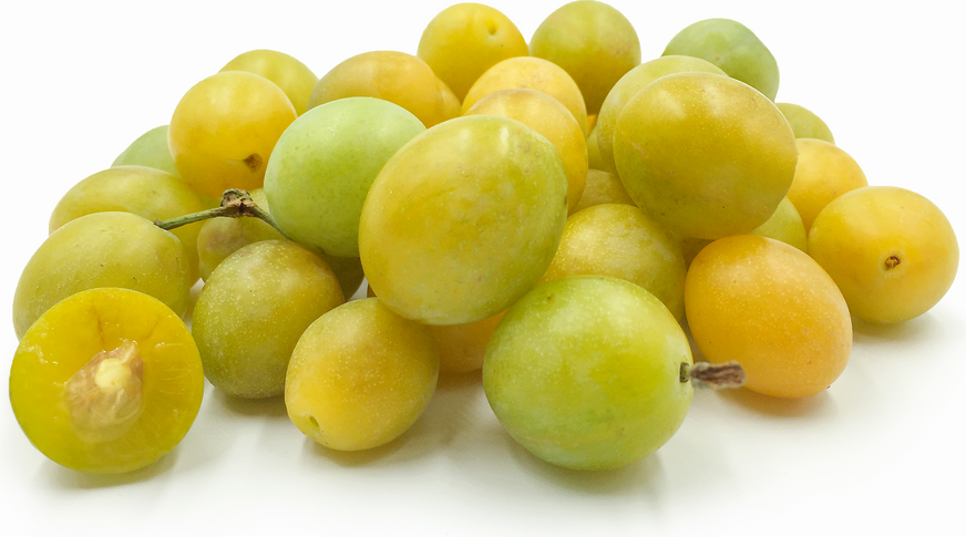 Yellow Damson Plums picture