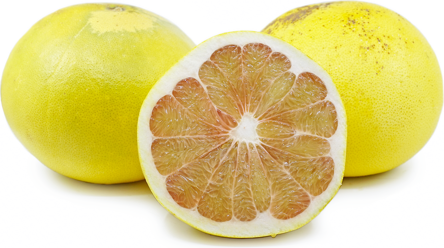 African Shaddock Pomelo picture