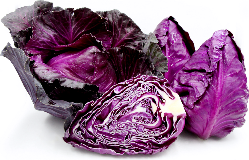 Red Conehead Cabbage picture