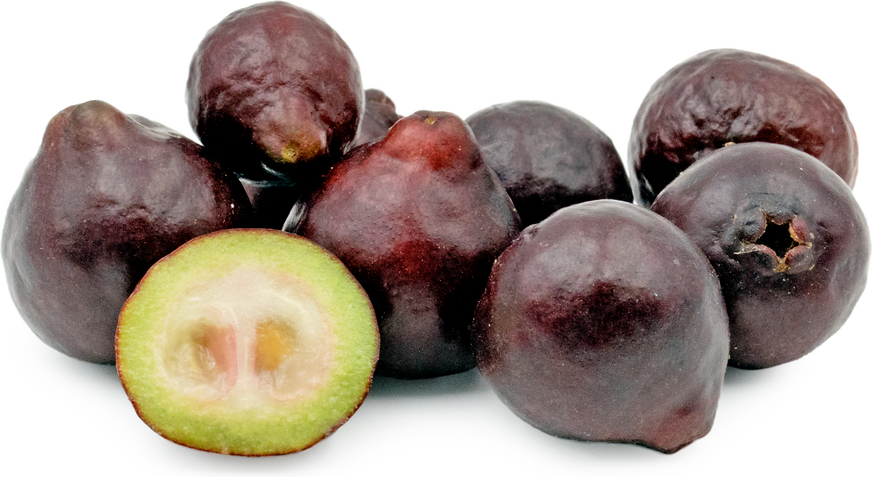 Purple Forest Guavas picture