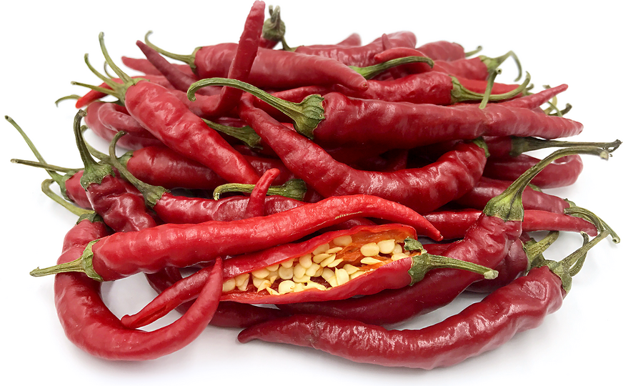 Hot Portugal Chile Peppers