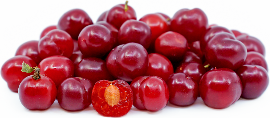Nanking Cherries picture