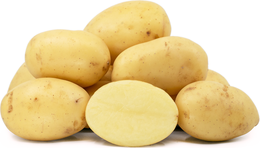 Maris Piper Potatoes picture