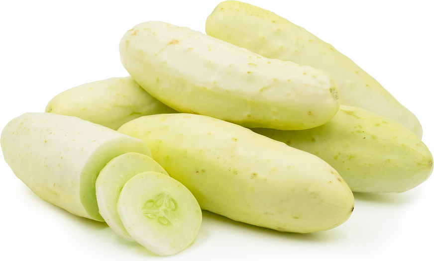 Blonde Cucumbers picture