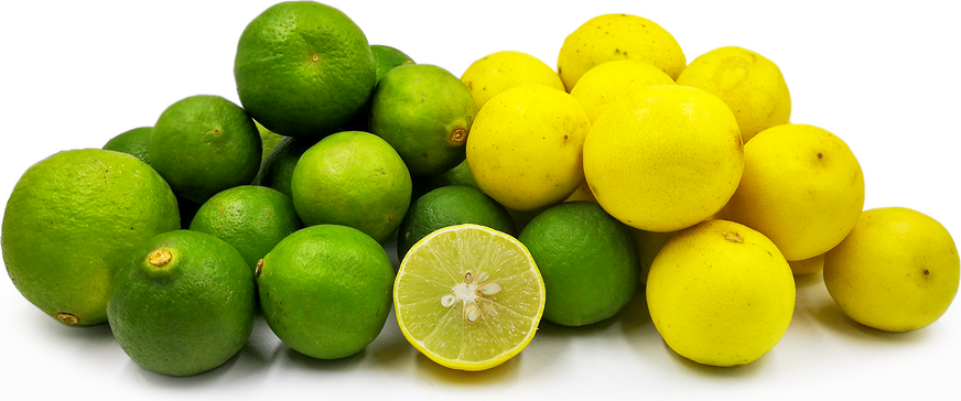 Indian Lemons picture