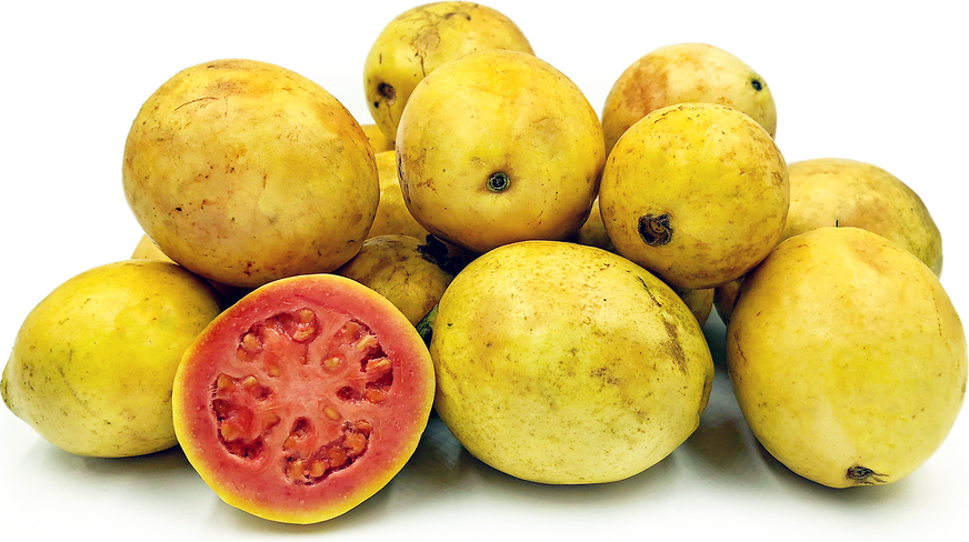 Tahitian Guavas picture