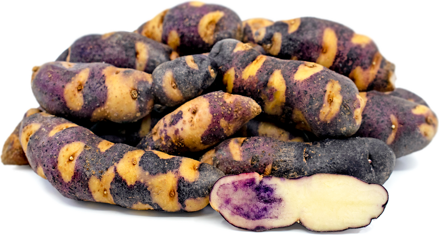 Blue Raccoon Fingerling Potatoes picture
