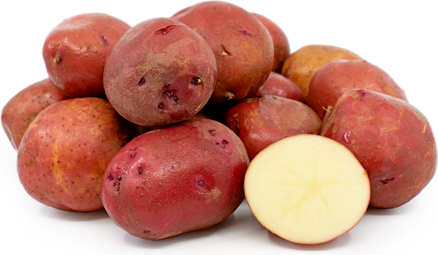 Potatoes Kerr's Pink picture