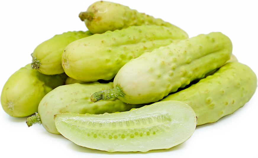 Martini Cucumbers picture