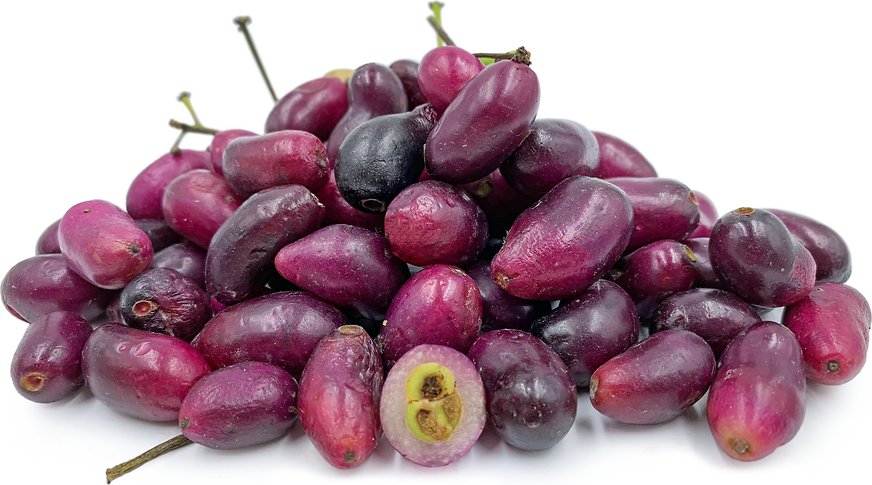 Purple Jamblang Fruit picture