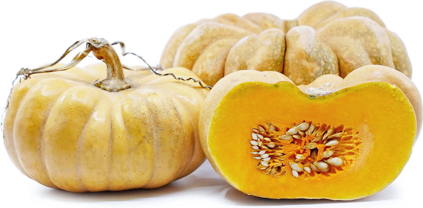 Thai Pumpkin Squash picture