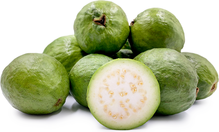 White Guavas picture