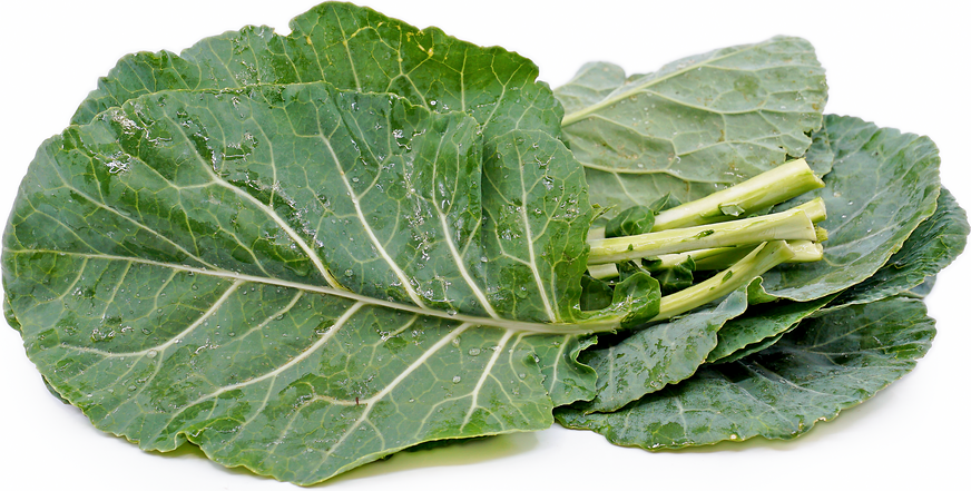 Collard Greens picture