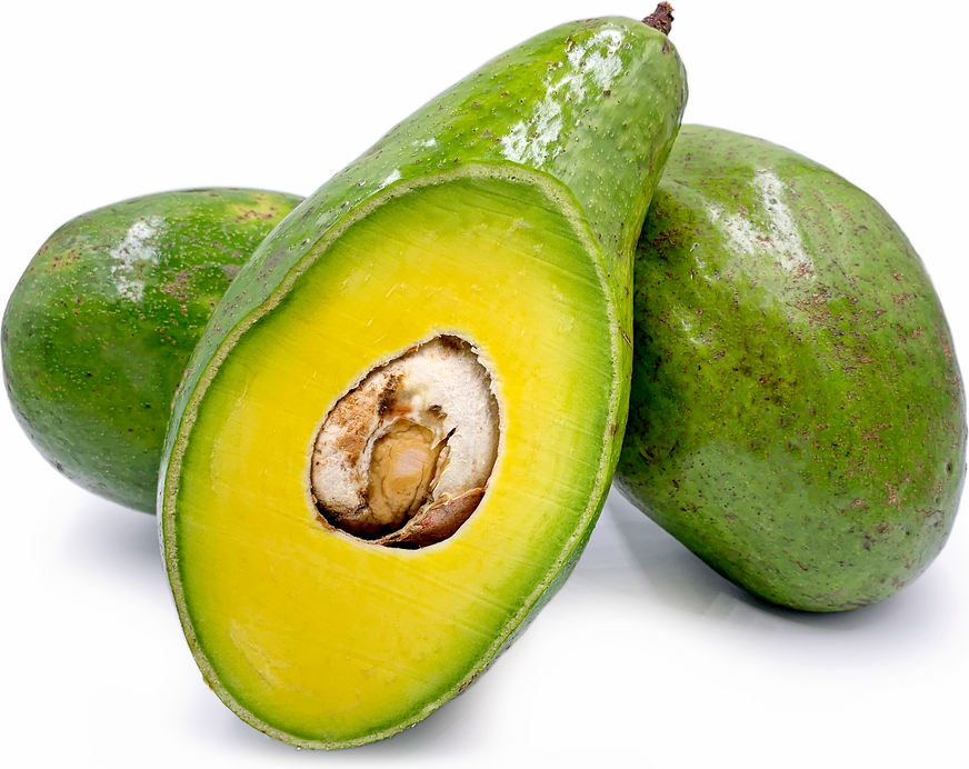 Ghanaian Avocados picture