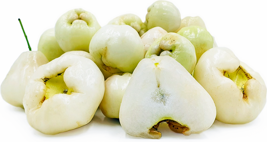 White Jambu picture