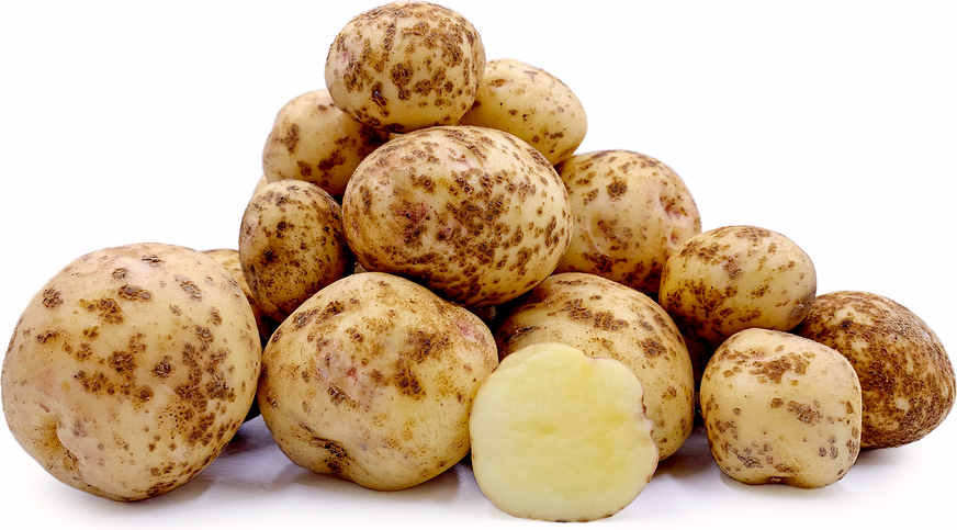 Kita Akari Potatoes picture