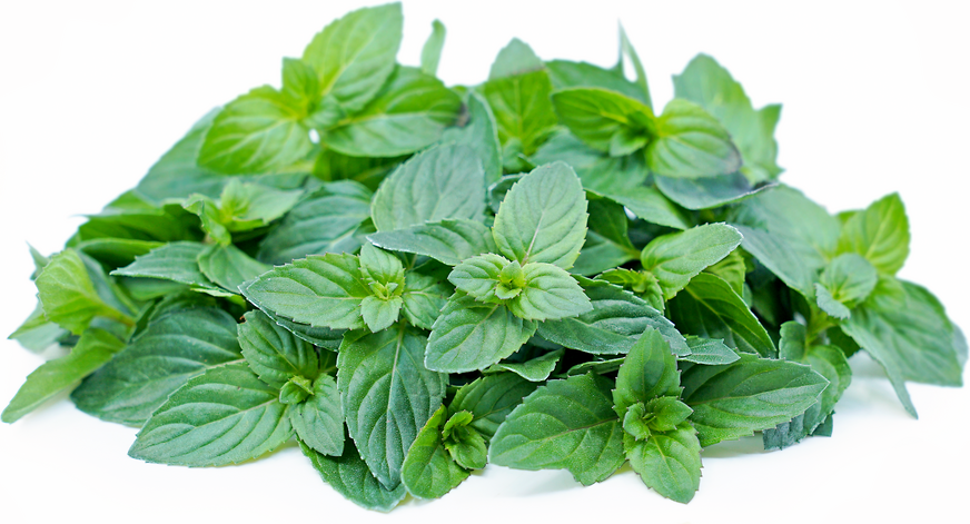 Basil Mint picture