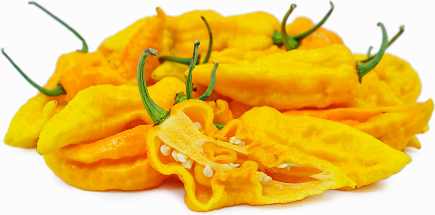 Yellow Bhuy Chile Pepper picture