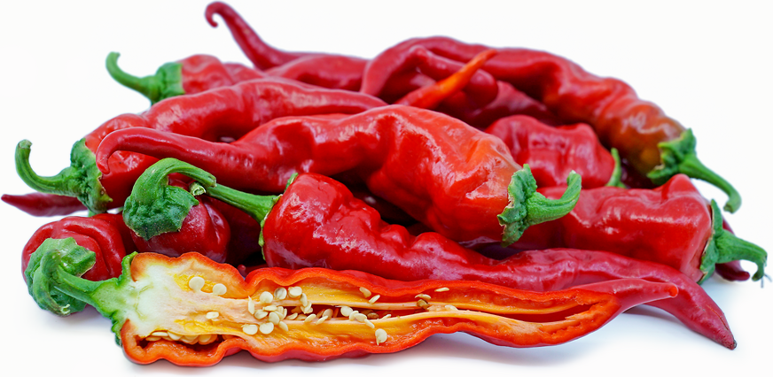 Caribbean Chile Pepper picture