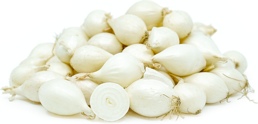 White Pearl Onions picture
