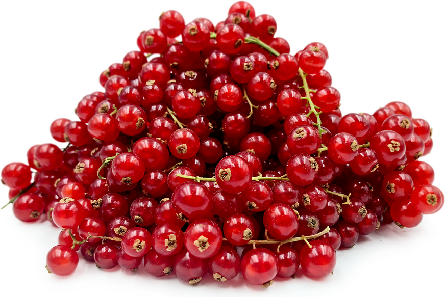 Red Currant Berries picture