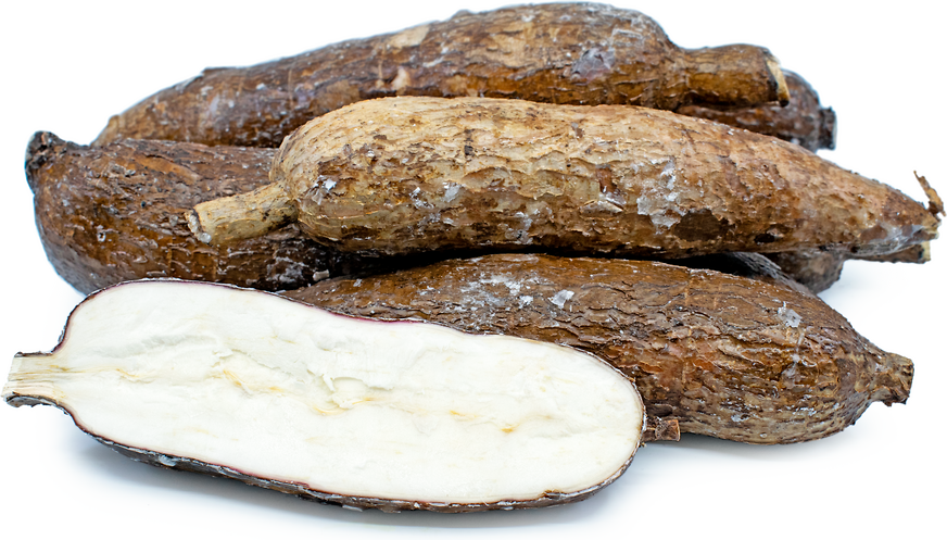 Yuca Root picture