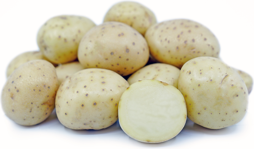 White Rose Potatoes picture