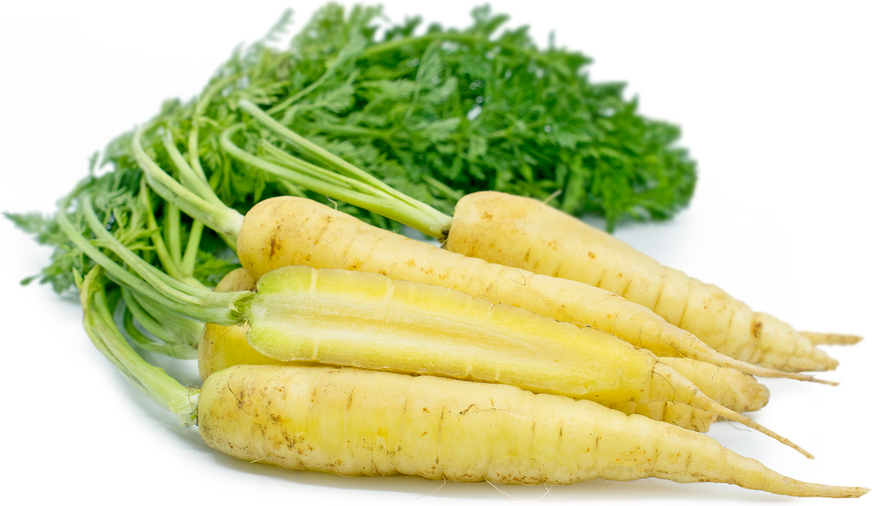 Baby White Bunched Carrots picture