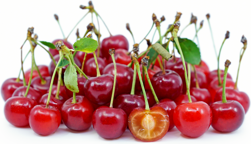Sour Cherries picture