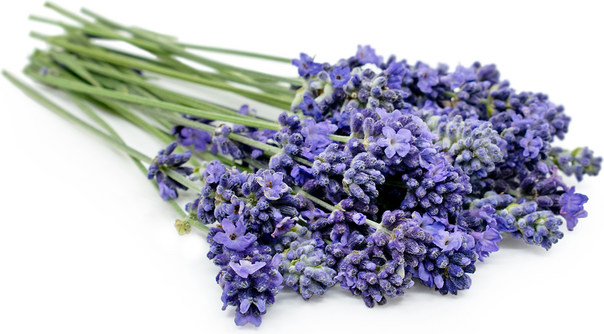 Lavender MicroFlowers™ picture