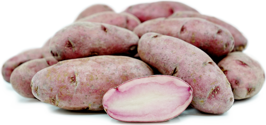 Red Thumb Fingerling Potatoes picture