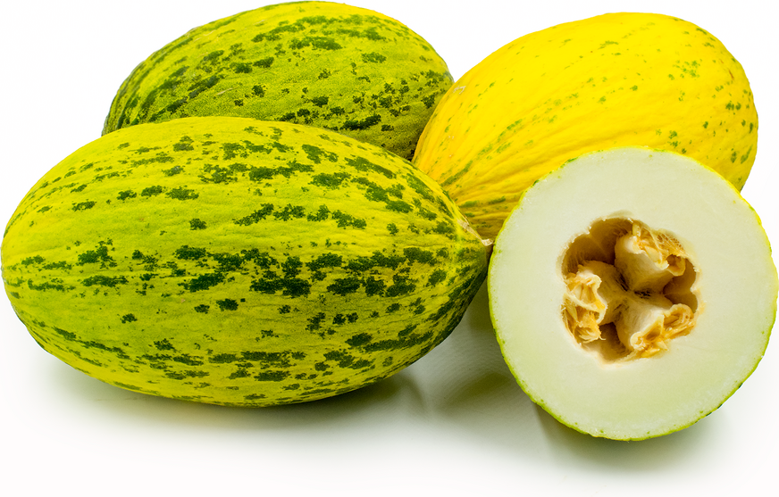 Santa Claus Melon picture