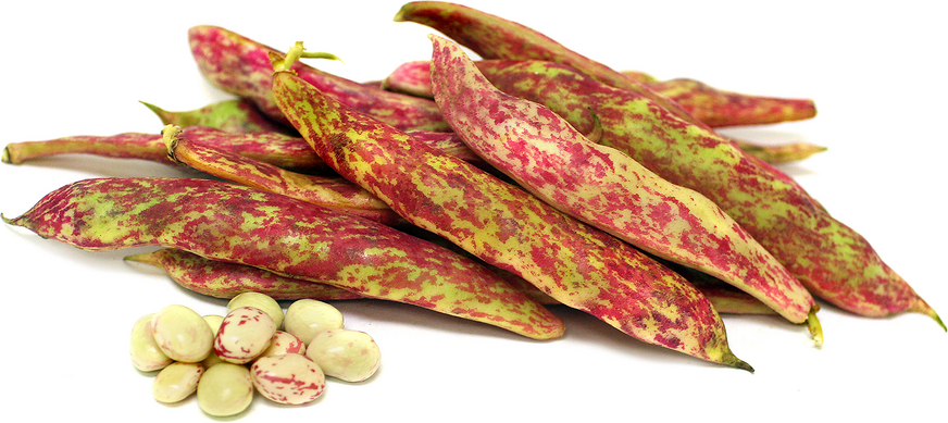 Tongue of Fire Shelling Beans