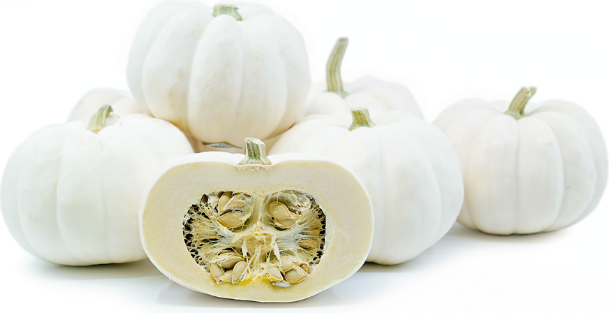 Mini White Pumpkins picture