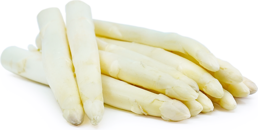 White Asparagus picture
