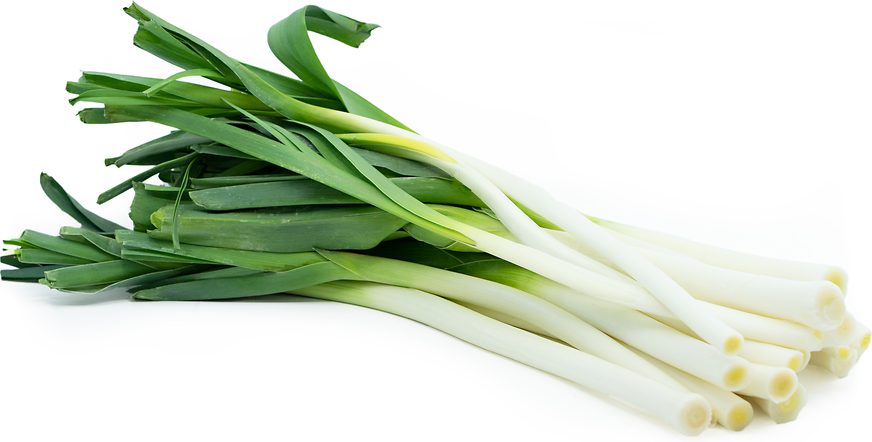 French Leeks picture