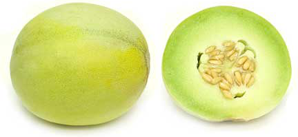 Boule D' Or Melon picture