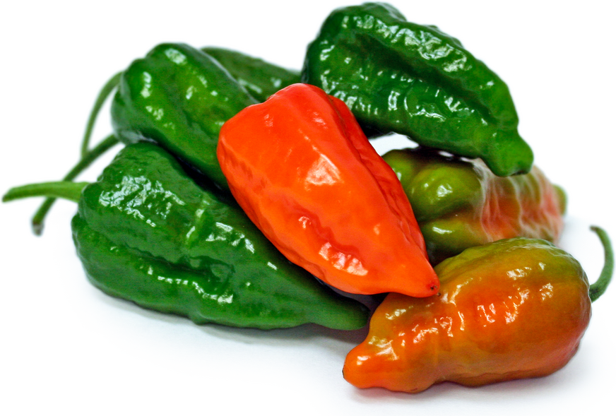 Green Ghost Chile Peppers