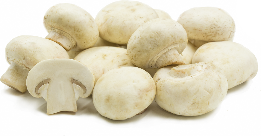 White Medium Mushrooms picture