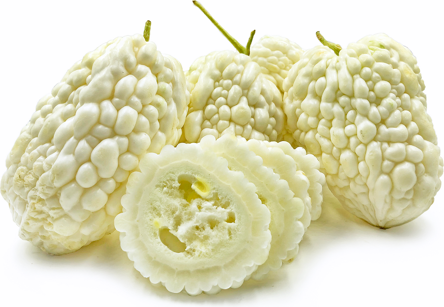White Bitter Melon picture