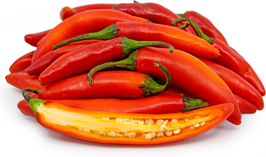 Red Serrano Chile Peppers picture