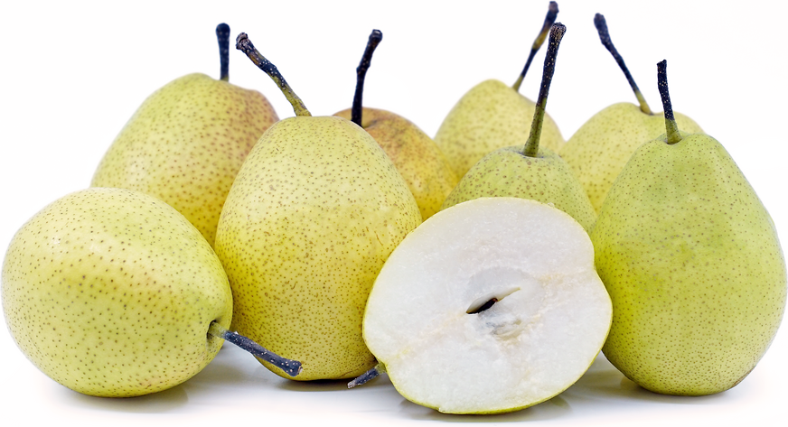 Fragrant Pears picture