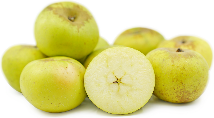 Roxbury Russet Apples picture