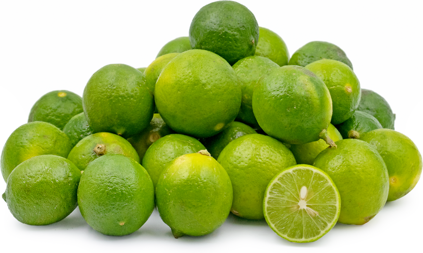 Mexican Key Limes picture