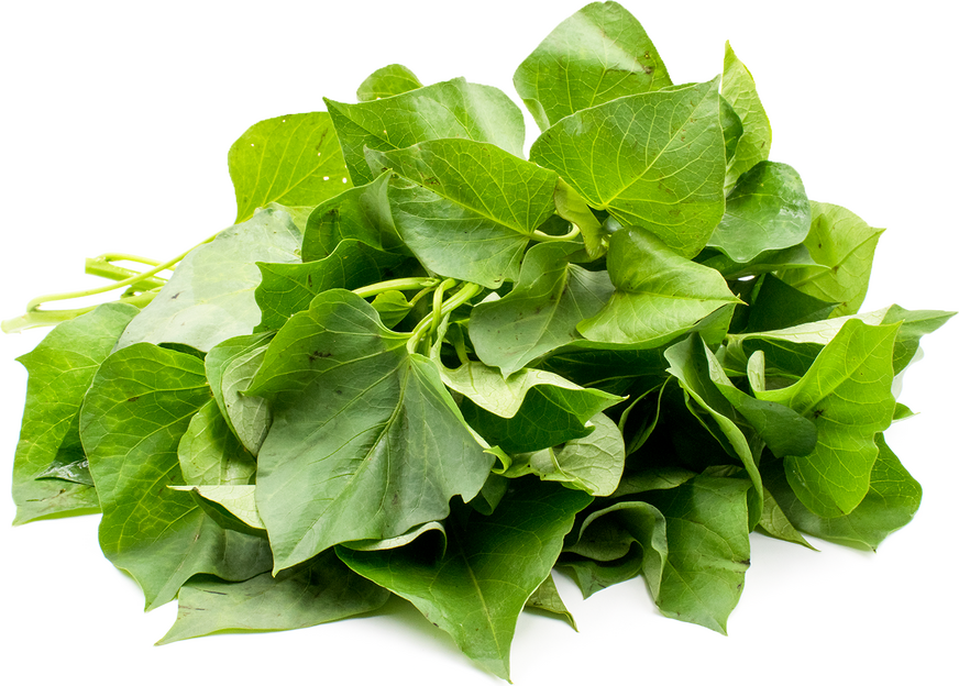 Yam Leaves picture